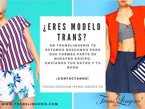 modelo-trans