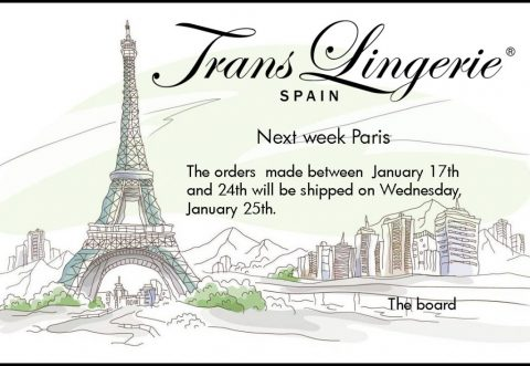 paris english translingerie
